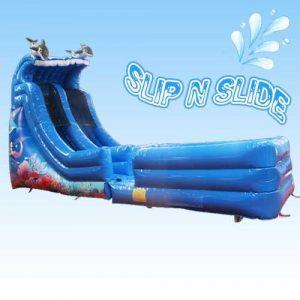 Dolphin Slide w Lane